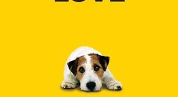 [The Best]사랑을 찾아 나선 강아지: Sponsor A Dog